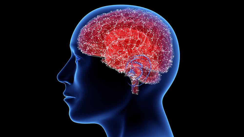 สิ่งทำลายสมอง ที่คุณไม่ควรมองข้าม